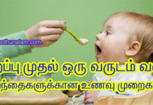 baby food for 1 year in tamil