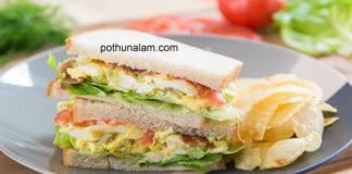 Egg sandwich recipes in tamil