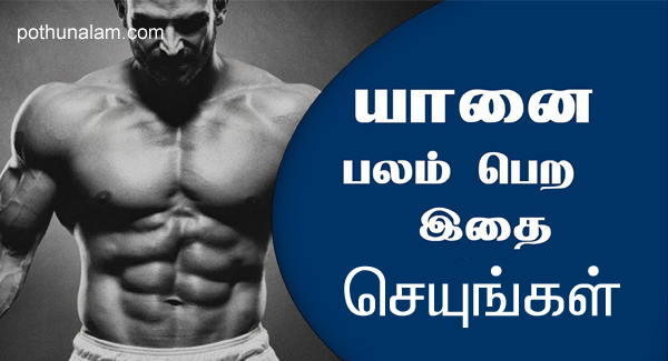 six pack tips in tamil