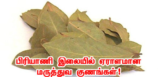 bay leaf benefits in tamil