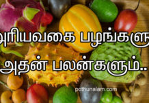fruit benefits in tamil