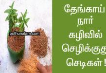 coco peat benefits