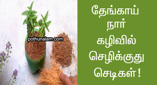 coco peat benefits