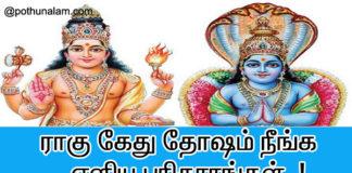 ராகு கேது தோஷம் நீங்க பரிகாரம்