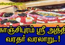 அத்தி வரதர் வரலாறு