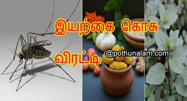 கொசு விரட்டி தயாரிப்பு