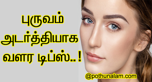 Eyebrow Growth Tips in Tamil