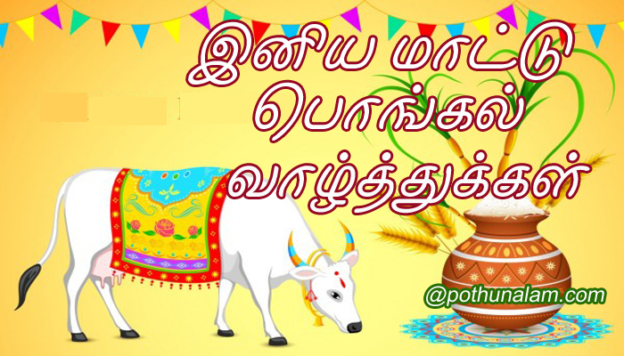 Mattu Pongal Wishes in Tamil