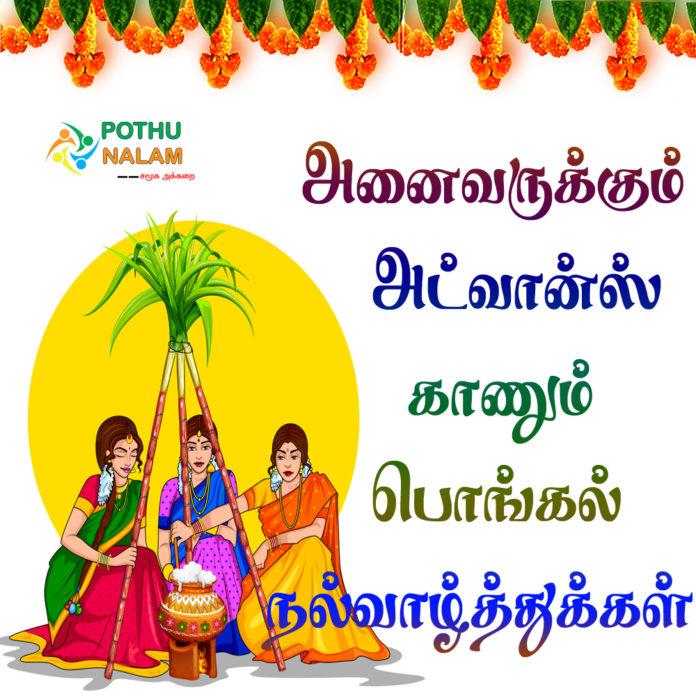 kaanum pongal wishes 2021