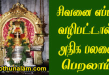How to worship lord shiva in temple
