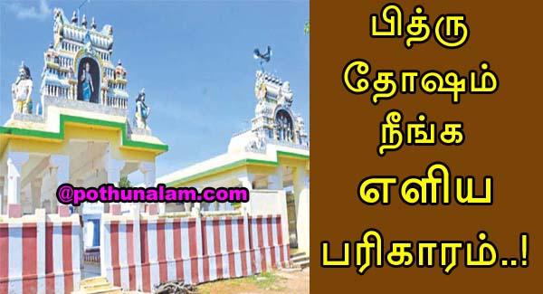 Pithru Dosham Neenga In Tamil