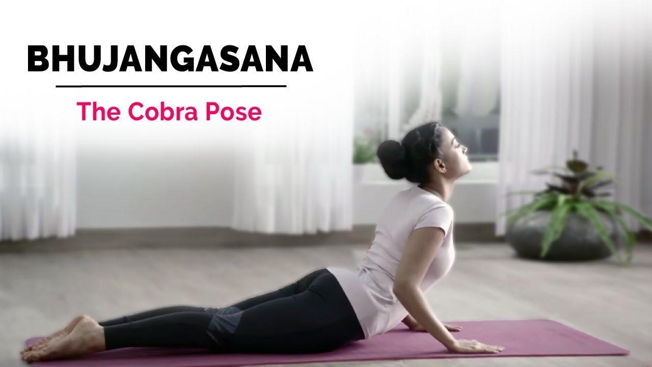 Bhujangasana - Cobra Yoga Pose