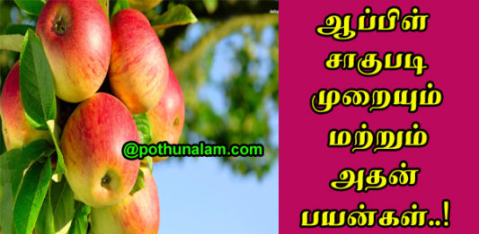 Apple Cultivation Uses