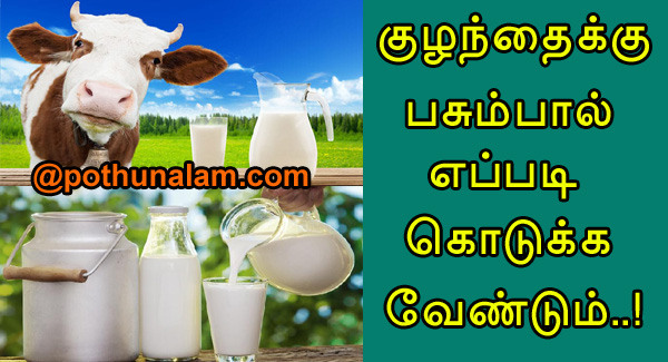cow milk in tamil