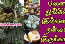 palm fruit health benefits