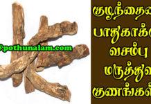 Vasambu Uses In Tamil