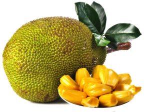 Jackfruit Uses And Benefits