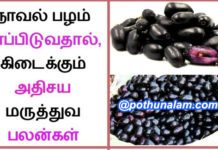 Jamun fruit benefits in tamil