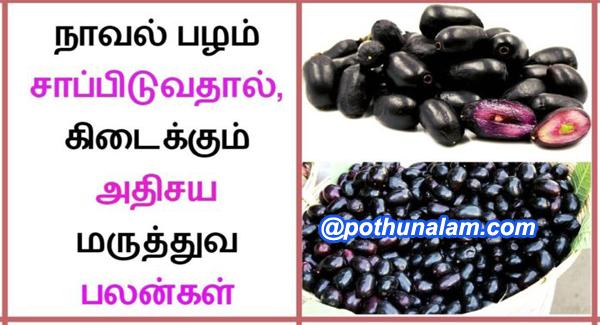 Jamun fruit benefits in tamil