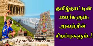 Tamilnadu Famous Foods
