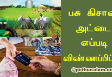 pashu kisan credit card apply 2020