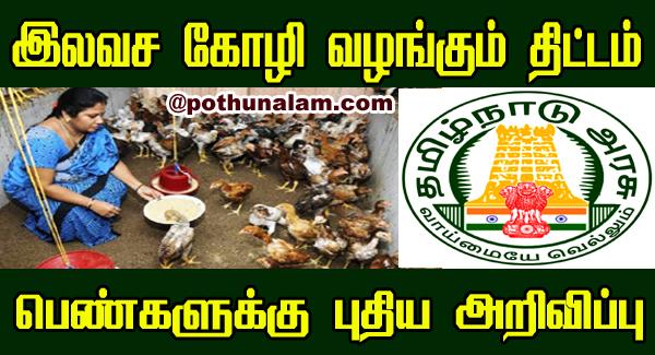 Nattu Koli Valarpu In Tamil