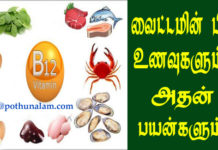 vitamin b12 foods in tamil