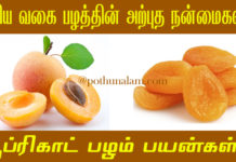 Apricot Benefits in Tamil