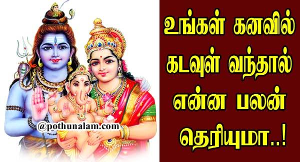 Kanavil Kadavul Vanthal Enna Palan