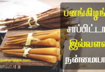 Pana Kilangu Benefits in Tamil