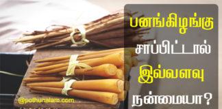 Pana Kilangu Benefits in Tamil