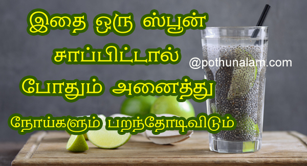 Chia Seed Benefits in Tamil