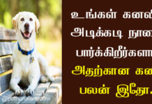 Dog Kanavu Palangal in Tamil