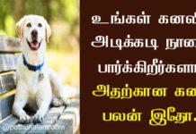 Dog Kanavu Palangal in Tamil