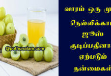 Nellikai Juice Benefits in Tamil