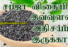 Sabja Seeds Uses In Tamil
