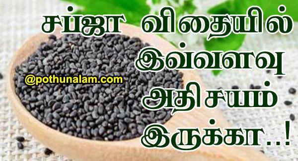 Sabja Seeds Uses In Tamil