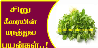 Siru Keerai Benefits in Tamil