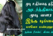 Hair Fall Tips in Tamil