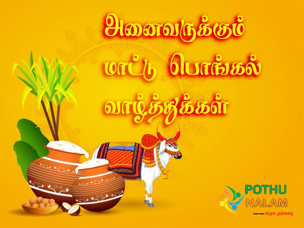 mattu pongal wishes