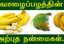 Banana Benefits In Tamil