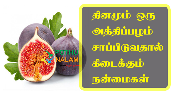 Athipalam Benefits