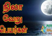 Nila Other Names in Tamil