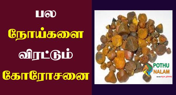 Korosanai Benefits in Tamil