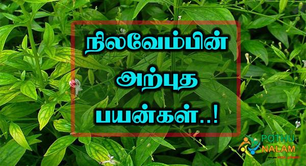 Nilavembu Uses in Tamil