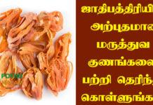 Jathipathri Uses in Tamil