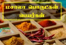 Masala Powder List in Tamil