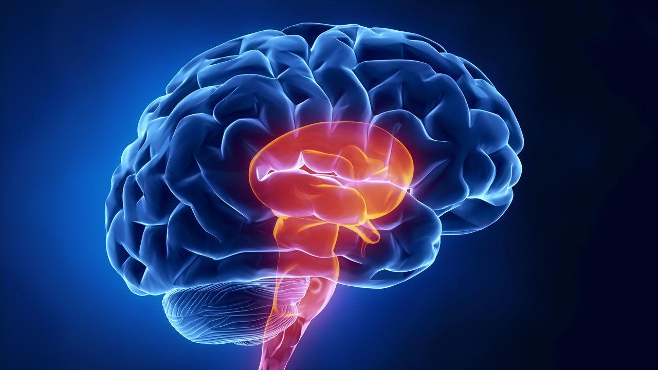 Brain Information in Tamil