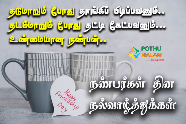 Friendship Day Quotes in Tami