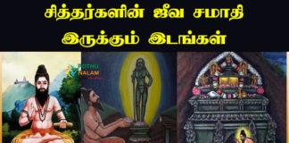 Siddhar Jeeva Samadhi List in Tamil